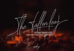 The Fallen Leaf Font