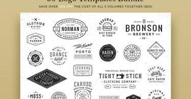 50 Logo Templates Bundle - 232706