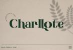 Charllote - Font