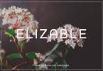 Elizable Font
