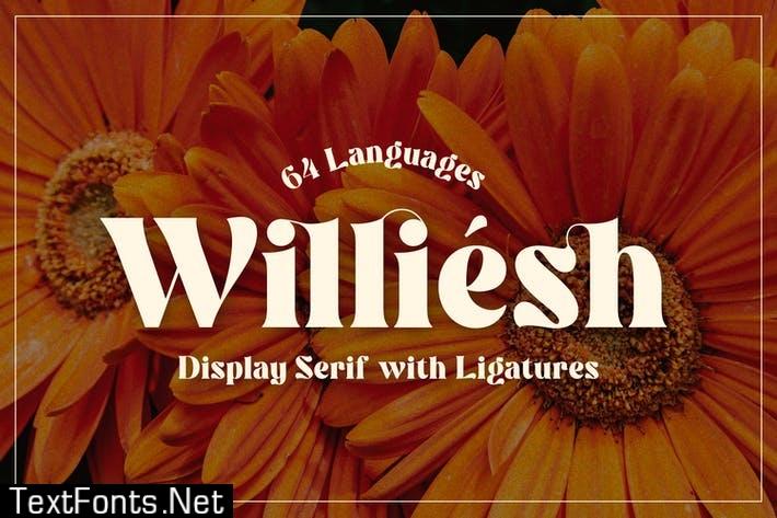 Williesh - Unique Display Serif
