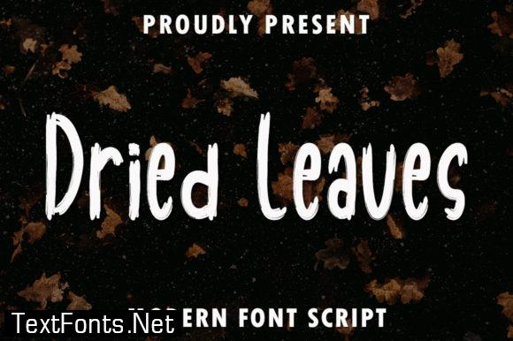 Dried Leaves Font