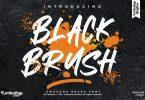 Black Brush Font LS
