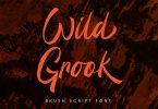 Wild Grook - Brush Font