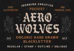 Aero Wolves Font