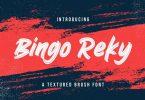 Bingo Reky - Textured Brush Font