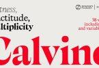 Calvino Font Family