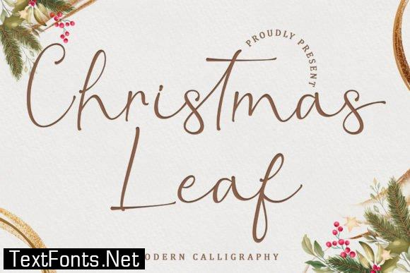 Christmas Leaf Font