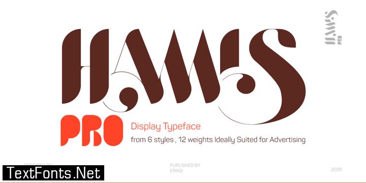 Hamis Pro Font Family