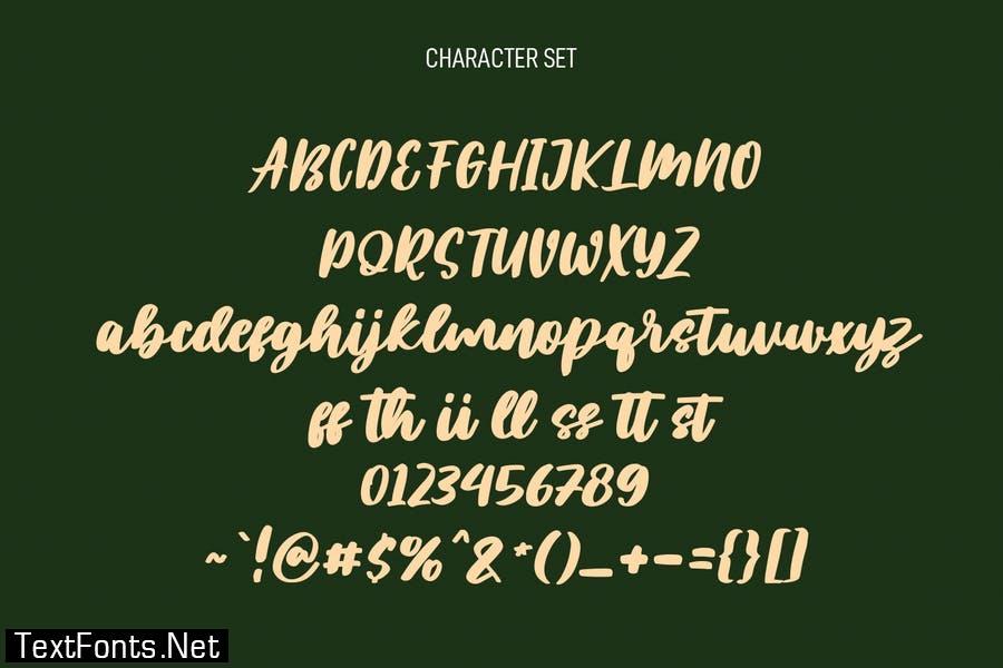 Plotwist Handwritten Script Font