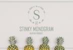 Stinky Font