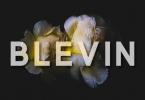 Blevin Font