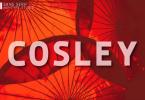 Cosley Font
