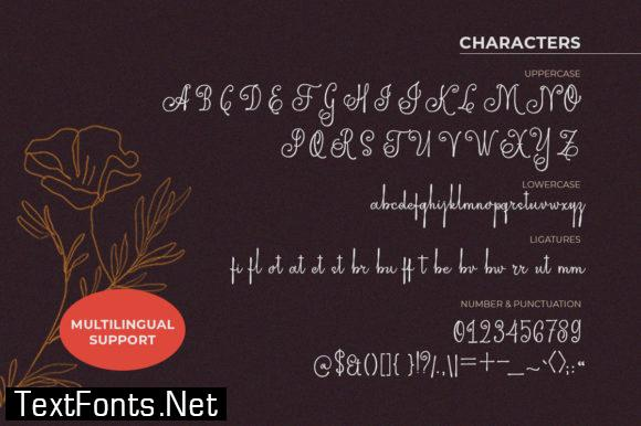 Edellyn Script Font
