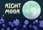 NightMoon Font