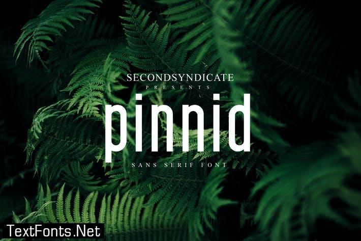 Pinnid Font