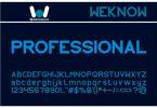 Professional Font