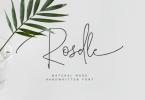 Roselle Font