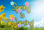 Spring is Coming Font