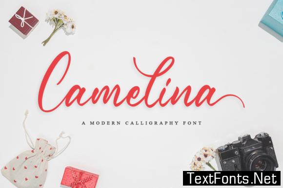 Camelina  Font