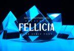 Fellicia - Sans Serif Font
