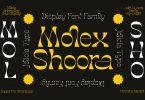 Molex Shoora | Reverse Contrast Font 6396222