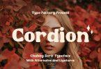 Cordion - Chubby Serif Typeface