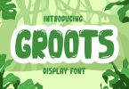 Groots - Display Font